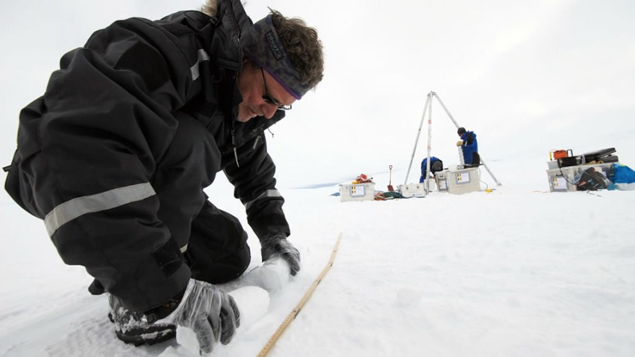 SciencePoles: Polar Science Hub