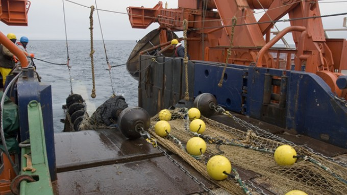 Polarstern / CAML expedition: weekly report - height of the biological fishing program